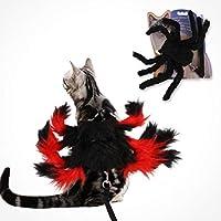 POPETPOP Perro tarántula Traje - arnés araña de Halloween del Gato ...