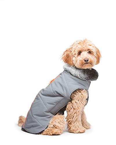 Dog Gone Smart Meteor Tamarack Reflective Coat Jacket, Gray w/Orange Piping, 16