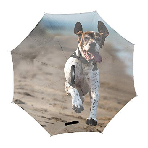 German Shorthaired Pointer Double Layer Inverted Umbrella for Car Reverse Upside Down C-Shaped Hands ()