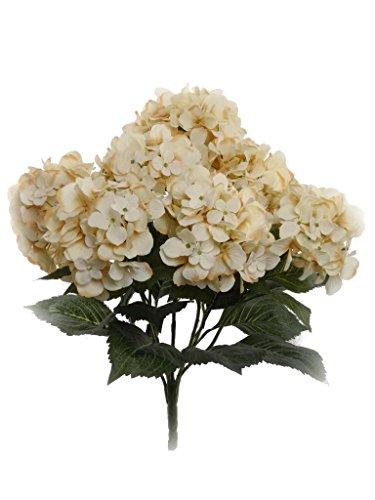 Small Hydrangea (Larksilk Hydrangea Silk Artificial Bush w/ 7 Mop Heads, 22 Inches (Beige))