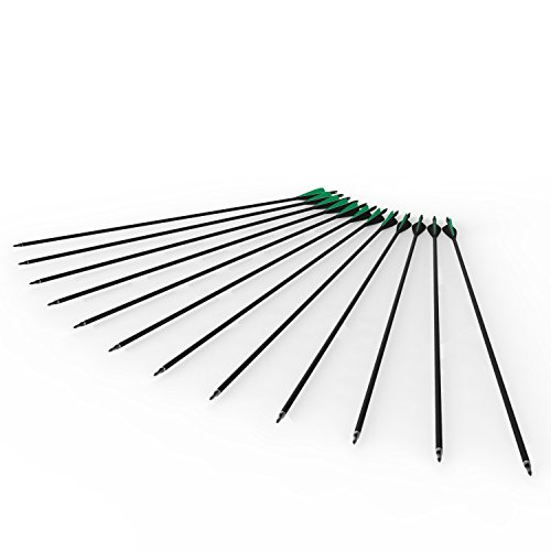 Posch 32'' the Green Arrow - 12 Pack