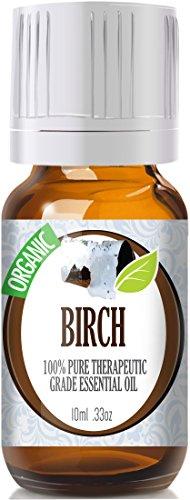 Береза (органическая) 100% Pure, лучших лечебно-Grade Эфирные масла - 10 мл