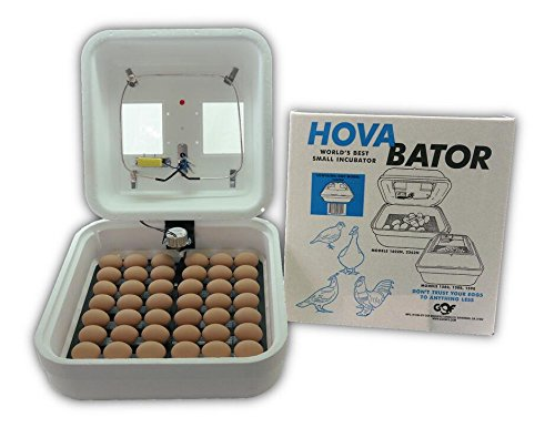 Still Air Incubator - G.Q.F. Manufacturing 1602N Hova-Bator Incubator