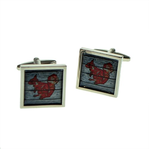 Framed Cufflinks Square - Geometric Squirrel On Driftwood Square Framed Cufflinks X2BOCSB077