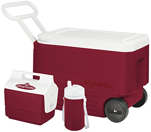igloo cooler personal size - 5