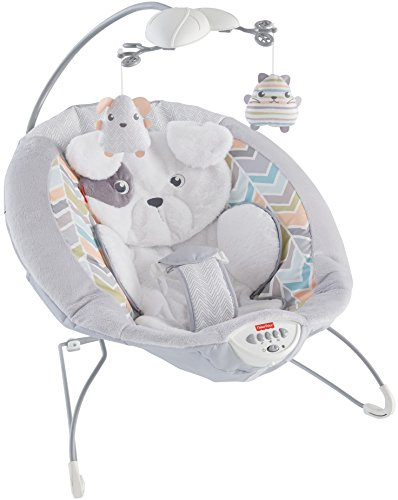 Fisher-Price My Little Snugapuppy Deluxe Bouncer, White (Seat Fisher Bouncer Price)