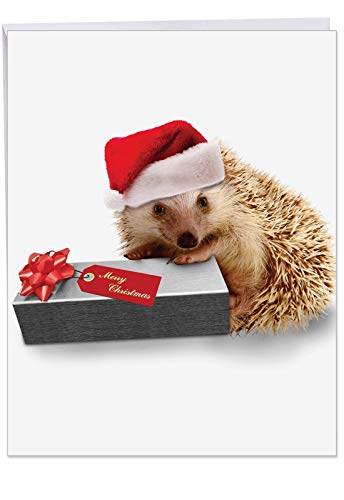 Large 'From The Hedge Present' with Envelope 8.5 x 11 Inch - Season's Greetings from A Cute Hedgehog Dressed in A Santa Hat - Animal Christmas Note Card J6541EXSG