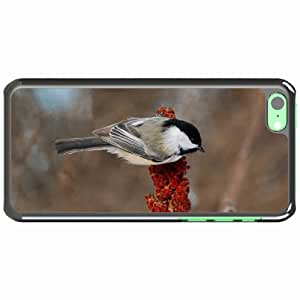 iPhone 5C Black Hardshell Case branch background color feathers Desin Images Protector Back Cover