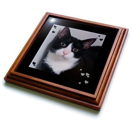 3dRose trv_242425_1 Cute Trivet with Tile, 8 by 8