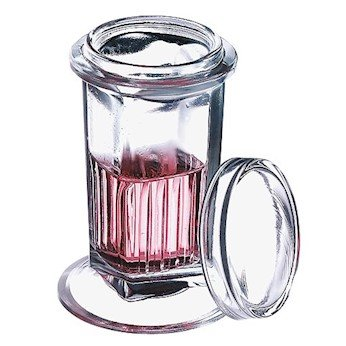 Wheaton Glass Coplin Staining Jar with glass cover by Cole-Parmer
