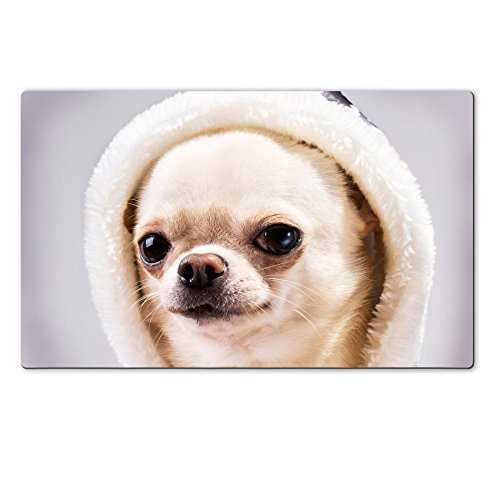 [MSD Natural Rubber Large Table Mat Image ID 24455689 face of chihuahua dog in hood close up] (Animals Dressed Up In Halloween Costumes)