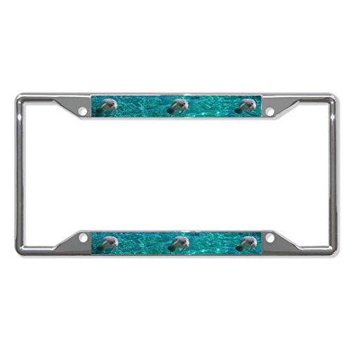 Manatee Animal Metal License Plate Frame Tag Holder Four Holes Perfect for Men Women Car garadge Decor]()