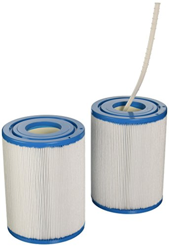 Filbur FC-2387 Antimicrobial Replacement Filter Cartridge for Rainbow DSF 50 Pool and Spa Filter ()