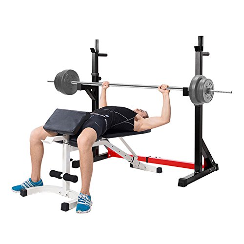 Ollieroo Multi function Barbell Rack Dip Stand Gym Family Fitness Adjustable Squat Rack Weight Lifting Bench Press Dipping Station