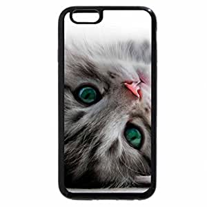 iPhone 6S / iPhone 6 Case (Black) pink Nose