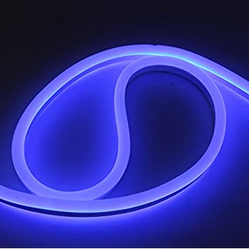 Amazon 12 volt led flex neon light strip led neon flex light 12 volt led flex neon light strip led neon flex light 65 ft blue aloadofball Gallery
