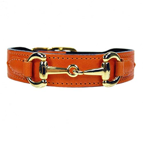 Hartman & Rose Leather Dog Collar with Gold Plated Horse Bit Design - Belmont Collection Fancy Dog Collars Tangerine, 14-16 Inch