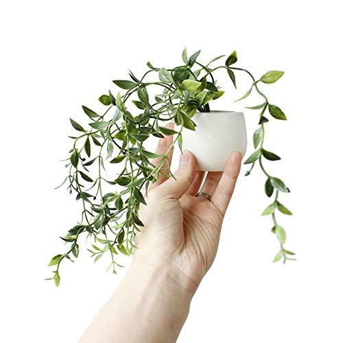 WISREMT Imanes de nevera Plantas suculentas artificiales en maceta Pegatinas magnéticas Imanes de refrigerador decorativos para decoración del hogar