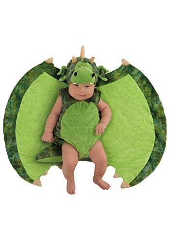 Prince And Princess Costumes For Babies - Princess Paradise Baby Swaddle Wings Drooly