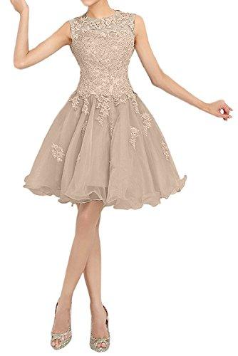 mia Kurz Damen Champagner Partykleider Spitze 2018 Promkleider Neu Kinielang Braut La Abendkleider Cocktailkleider Tanzenkleider Zwq6dZ