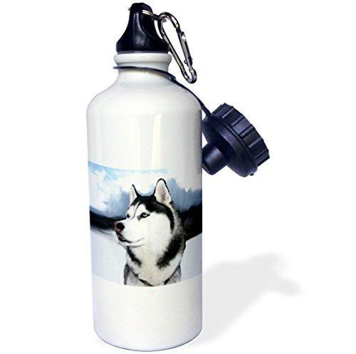 YuieKim Siberian Husky Sports Water Bottle - 20 Oz