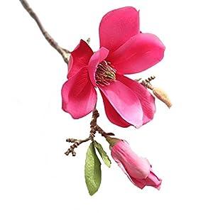 Mikilon Artificial Silk Flowers Magnolia Fake Floral Bouquets Indoor Outdoor Vase Filler Home Kitchen Patio Wedding Centerpieces Arrangements Farmhouse Decor, 1 Stem (Hot Pink) 1