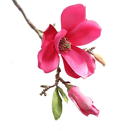 (Alelife Artificial Fake Flowers Leaf Magnolia Floral Wedding Bouquet Party Home Decor Filler Floral Decor (C))