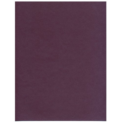 UPC 610074233138, JAM Paper 8 1/2 x 11 Cardstock - 110 lb Ruby / Purple Stardream Metallic - 50 Sheets per Pack