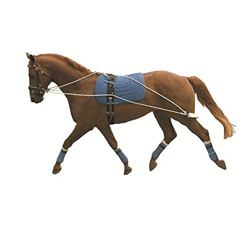 Kincade Lunging Training System (One Size) (May Vary)