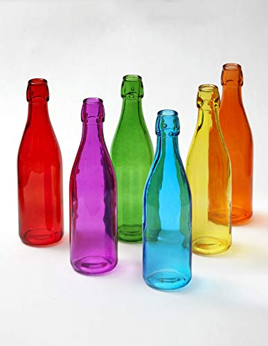 The Lakeside Collection Multicolored Glass Bottles - Set of 6 Artistic Home Tabletop Decorations