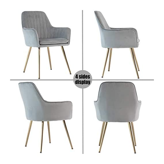 GOLDEN BEACH Velvet Dinning Chair Set of 1 Mid-Back Accent Chair Modern Leisure Armchair with Gold Plating Legs Upholstered Living Room Chair (Gray) - Soft Velvet Upholstery:Skin-friendly fabric design,elegant and delicate decoration in living room,dinning room and guest room. Ergonomic Design:Ergonomic design mid-back fits your back curve perfectly,soft back cushion support helps to relieve back tightness,comfy for long time seating. Sturdy Structure: Metal frame internal the dinning chair matches the high density foam add the steady of the whole chair.Weight capacity hold up to 250lbs. - living-room-furniture, living-room, accent-chairs - 41GxBjfn7xL. SS570  -