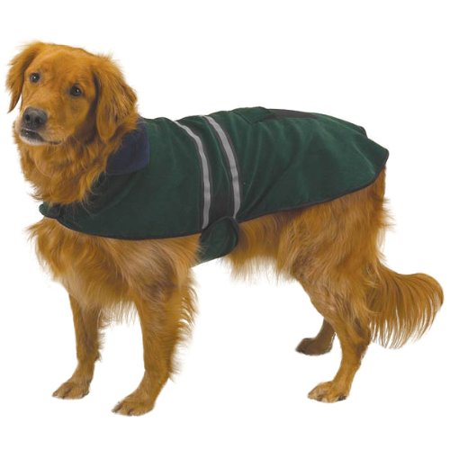 Casual Canine Fleece-Lined Reflective Dog Jacket for Safety, Green, XL