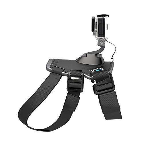 GoPro Fetch Dog Harness (GoPro Official Mount)