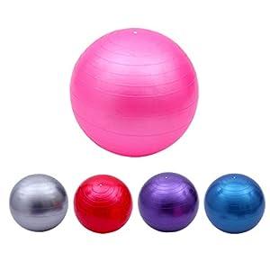 HONGNA Yoga Fitness Ball PVC Thicken Explosion-Proof 65cm Dragon Ball Gymnastics Dance Ball Environmentally-Friendly and…