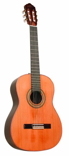 Giannini GWNC 6 Sor Handcrafted Classical Guitar (Acoustic, Nylon)