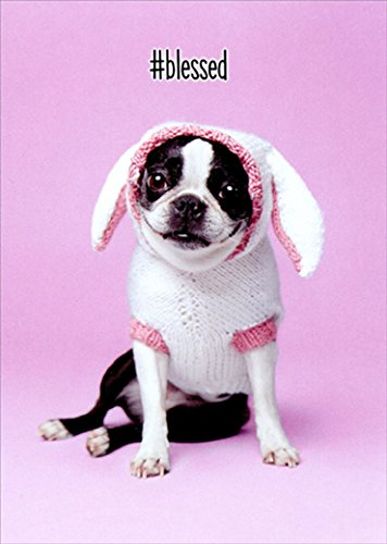 Dog Easter Bunny Cute Jack Russell Terrier Easter Card