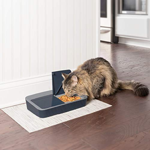 PetSafe Digital Two Meal Dog and Cat Feeder, Dispenses Dog Food or Cat Food, LCD Display, Programmable Timer (Feeder 2 Side)