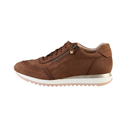 Toscani Brown Womens Rosy Ladies Lace Zip Trainers Up Detail Arnaldo vdqwzv