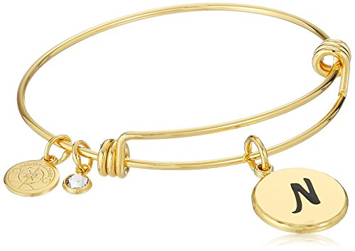 Halos & Glories, Initial N Shiny Gold Bangle Bracelet