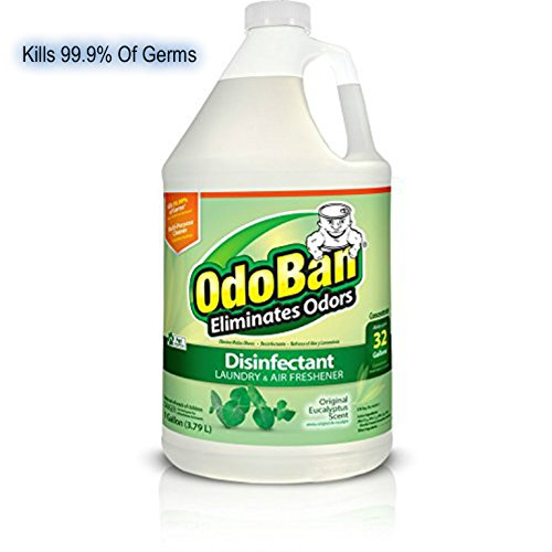 OdoBan Disinfectant Odor Eliminator and All Purpose Cleaner Concentrate, 1 Gal, Original Eucalyptus (Laundry Odor Eliminator)