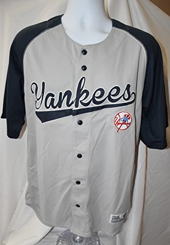 Dynasty Men's New York Yankees Jersey Grey/Navy Size Medium – DiZiSports Store