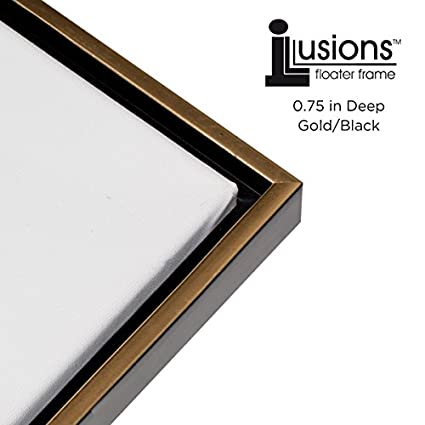 Amazon.com - Illusions Floater Frame for 3/4\