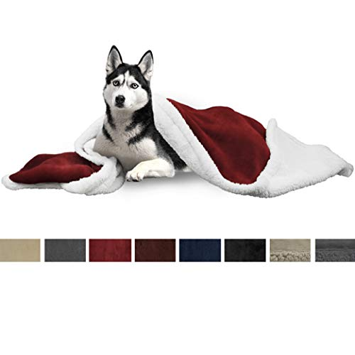 Deluxe Winter Blanket - PetAmi Deluxe Dog Blanket for Large Dogs | Sherpa Fleece Pet Throw Blanket for Couch Sofa Bed | Soft Durable Reversible Furniture Protector for Medium Dog Cat Puppy - 50x40 Wine