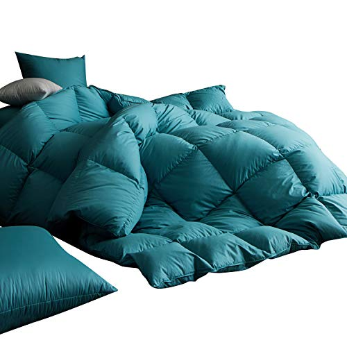 Goose Down Comforter Queen 50oz, 600 Fill Power, 100% Cotton Shell with Brushed Finish, Hypoallergenic, with Corner Tabs, All Season,Turquoise Blue ()