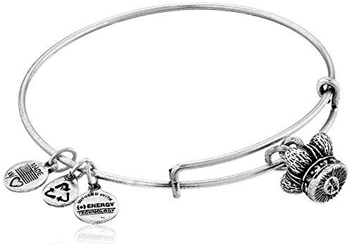 Alex Ani Russian Silver Expandable Bracelet