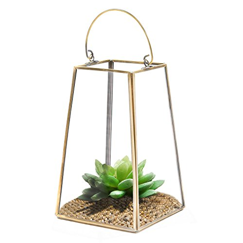 Clear Glass & Brass Metal Frame Tabletop Plant Terrarium / Candle Holder Lantern w/ Top Handle - MyGift (Terrarium Brass)