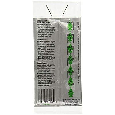 Little Trees Car Air Freshener 6-Pack (BlackBerry Clove): Automotive