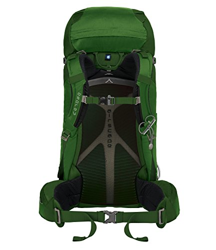 58 daypack Osprey 2 outdoor 2018 grey Men jungle Kestrel green Backpack ZgxcxqF5Uw