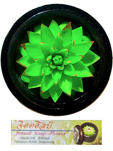 Jittasil Thai Hand-Carved Soap Cactus Gift Set Succulent (Agave)