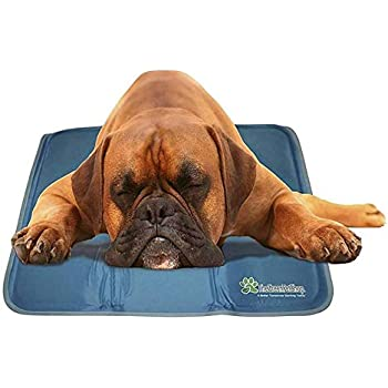The Green Pet Shop Dog Cooling Mat - Pressure-Activated Gel Cooling Mat For Dogs, Medium Large Size - This Pet Cooling Mat Keeps Dogs and Cats Comfortable All Summer - Ideal for Home and Travel